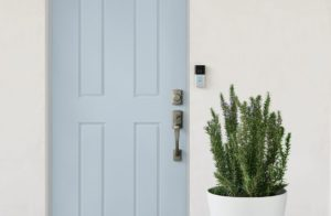 2020q1-lifestyle-insitu-rvd3-satinnickel-bluedoor-plant-simple-flipped